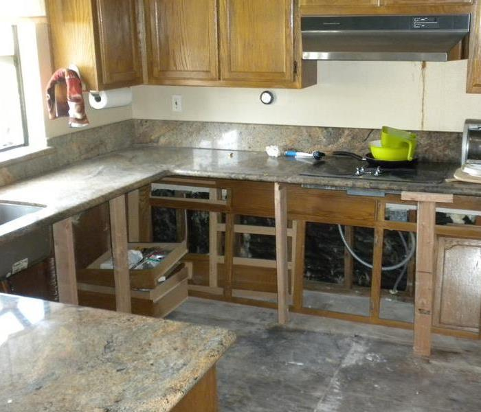 Kitchen Mold Removal in Brentwood, California After