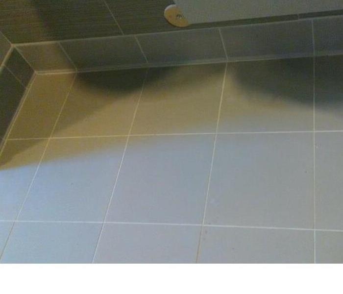 Tile Cleaning in a Furniture Store After