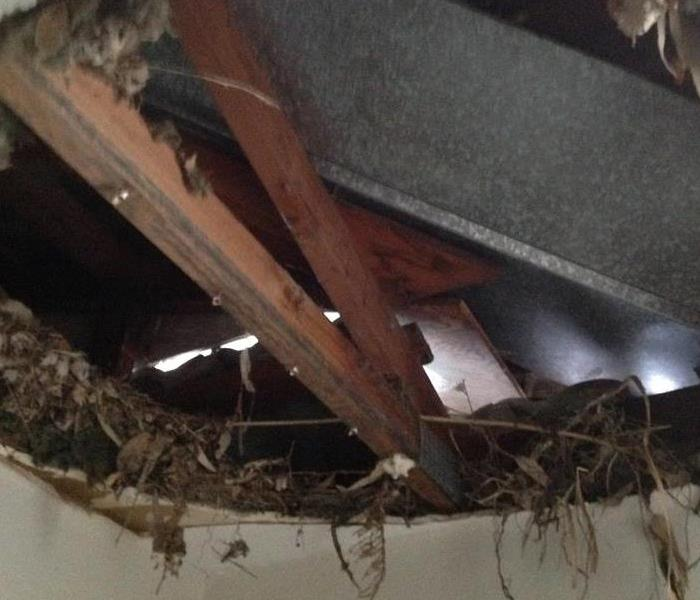 Bedroom Ceiling Collapse During a Storm