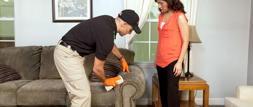 Lodi, CA carpet upholstery cleaning