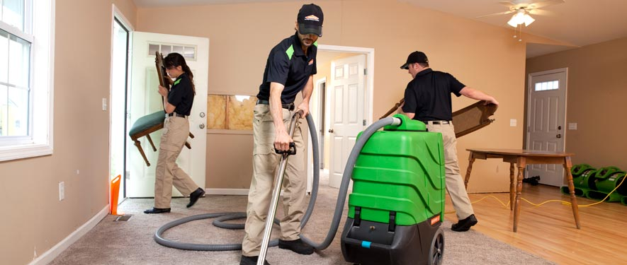 Lodi, CA cleaning services