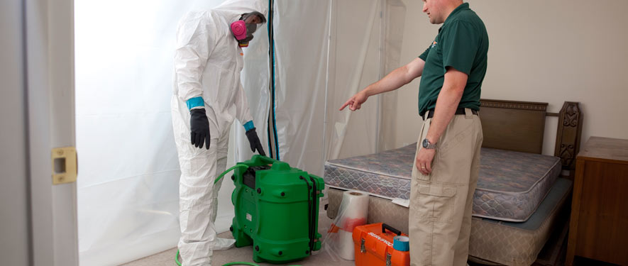 Lodi, CA mold removal process